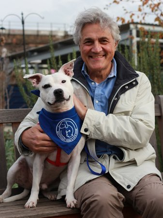d Battersea Dogs Home