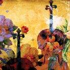 Bach cello suirte 1