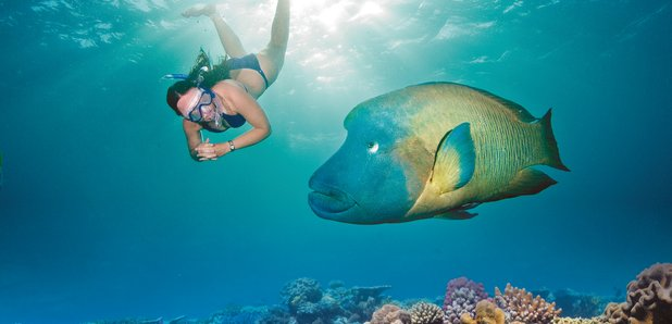 Swimming in Queensland