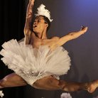 Dada Misilo's Swan Lake at Sadler's Wells