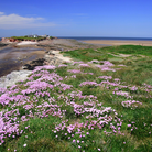 Discover Wirral