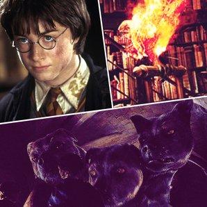 Harry Potter quiz asset